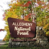 Allegheny National Forest sign